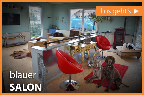 dl_blauer_salon