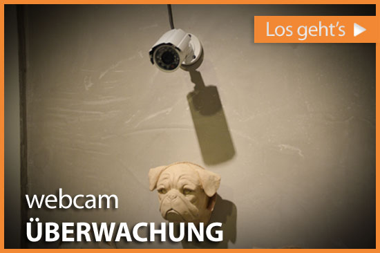 dl_webcam